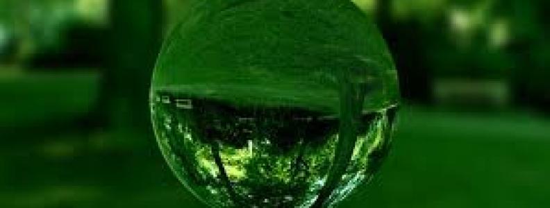 Tarun Gala on Environmental Conservation
