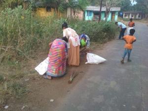 Village cleanup